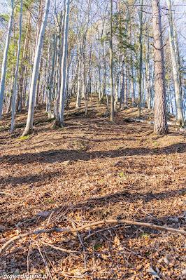 Stromiec: ściana północna (prawie jak na Lackowej)