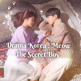 Download Drama Korea MEOW, The Scret Boy (Subtitle Indonesia)