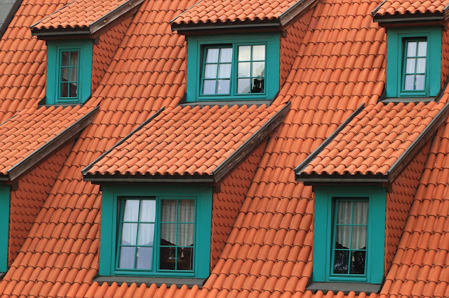 architecture roof windows