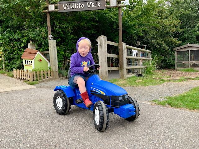 Child on blue toy tractor at Barleylands