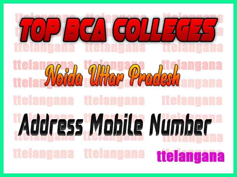 Top BCA Colleges in Greater Noida Uttar Pradesh