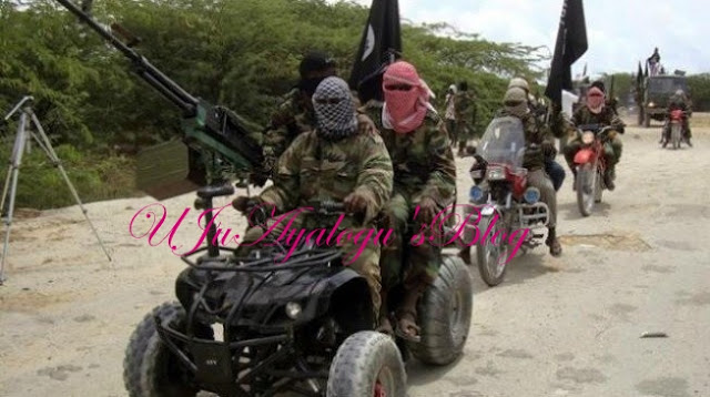 Understanding Why Boko Haram Urgently Needs A Territory, By Karen Goulding