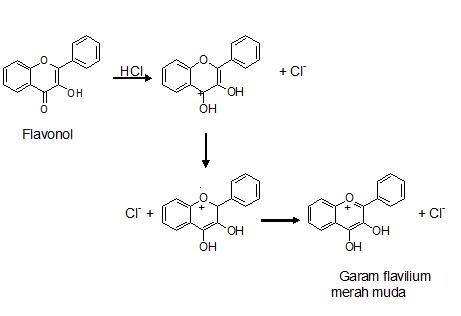 Pemeriksaan Flavonoid Pada Uji Fitokimia
