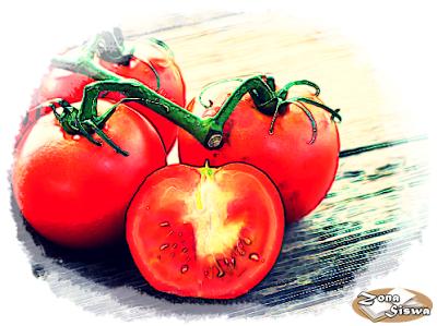Manfaat Tomat, Manfaat Kesehatan Tomat, Manfaat Tomat untuk Kulit, Manfaat Tomat untuk Tulang, Manfaat Tomat untuk Mata, Manfaat Tomat untuk Rambut, Manfaat Tomat untuk Gula Darah, Manfaat Tomat untuk Kanker, Manfaat Tomat untuk Berat Badan, Manfaat Tomat untuk Tidur, Manfaat Tomat untuk Tekanan Darah, Manfaat Tomat untuk Peradangan.