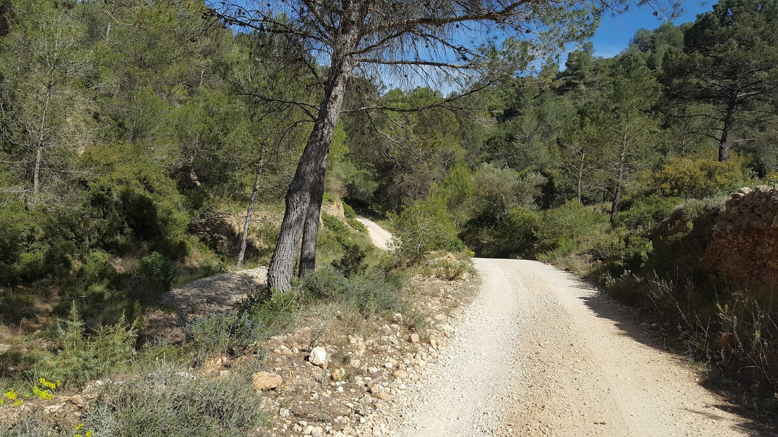 Cycling in Valencia - Off-road, Quatretonda