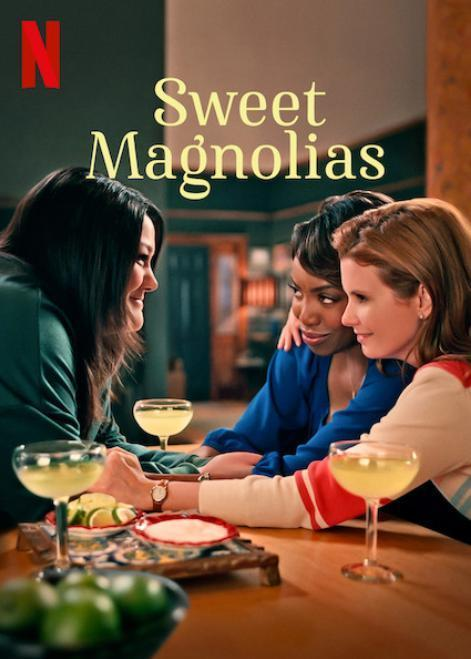 Dulces magnolias Temporada 1 Completa 720p Dual Latino-Ingles
