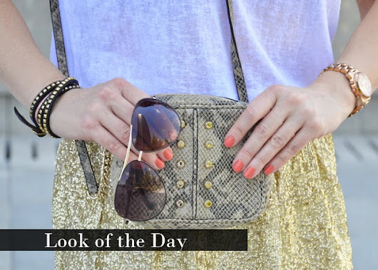 The Princess in Black: Look of the Day: Gold Squins