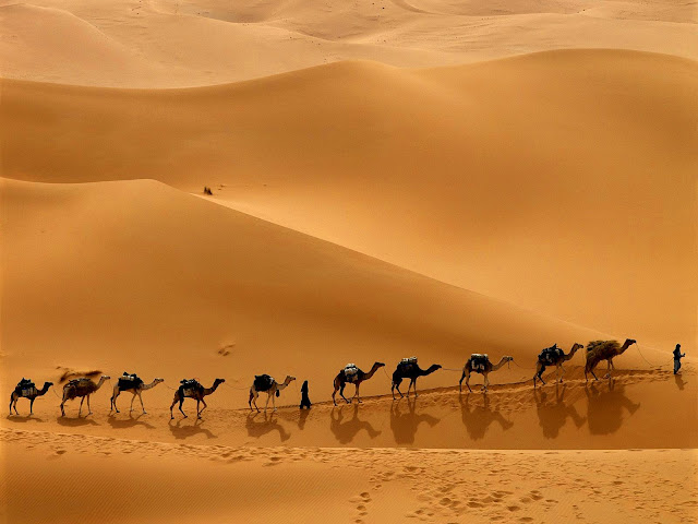Sahara - Foto de Hassan Ouatou