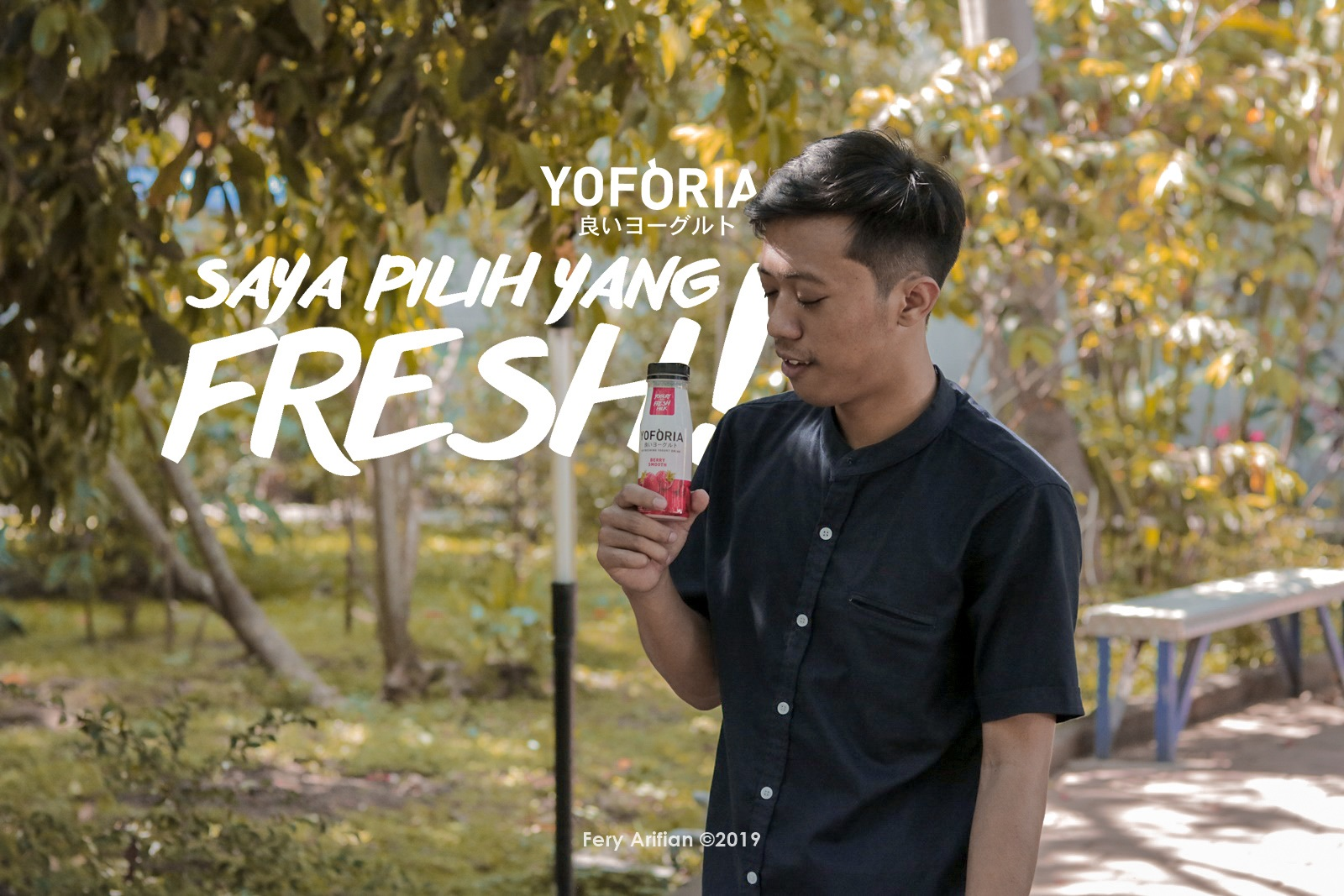 Yoforia - Yogurt With Live Prebiotics - Blog Competition
