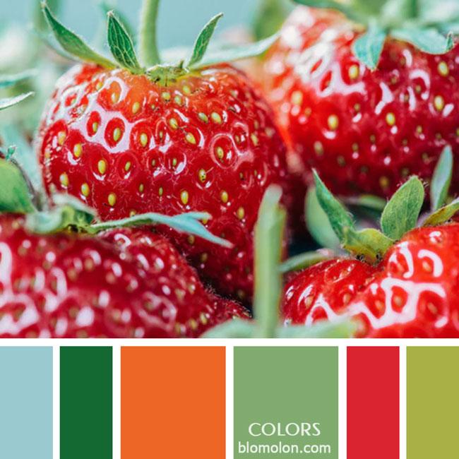 variedad_en_color_paletas_de_colores_23