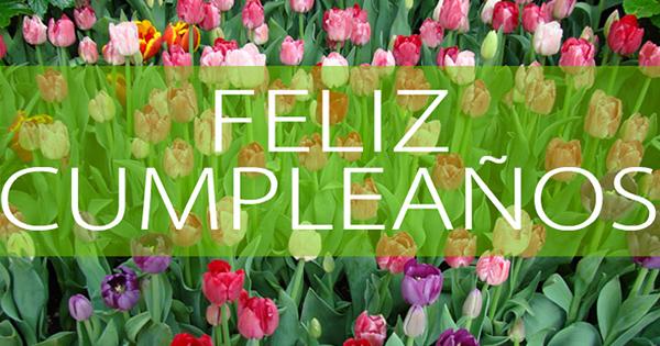 Imágenes y Tarjetas de Feliz Cumpleaños con Flores