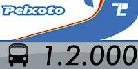 https://www.onibusdorio.com.br/p/12-transportes-peixoto.html