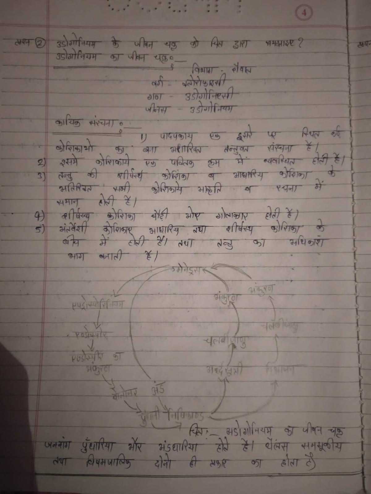 Bhoj University bsc 1st year assignment answer 2018-19: Bhoj