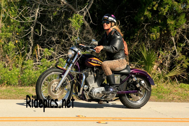 ridepics: the photos taken during daytona bike week are posted