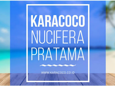 Lowongan Kerja Sebagai Admin Umum Di PT Karacoco Nucifera Pratama Bandung