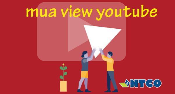 dich vu tang view youtube