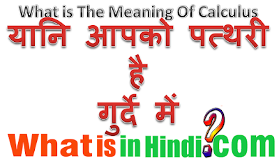 What is the meaning of Calculus in Hindi