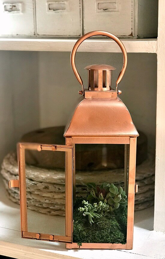 Copper Succulent Lantern Planter