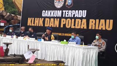 Gakkum KLHK dan Polda Riau Bongkar Belasan Sawmill kayu ilegal Kampar Riau