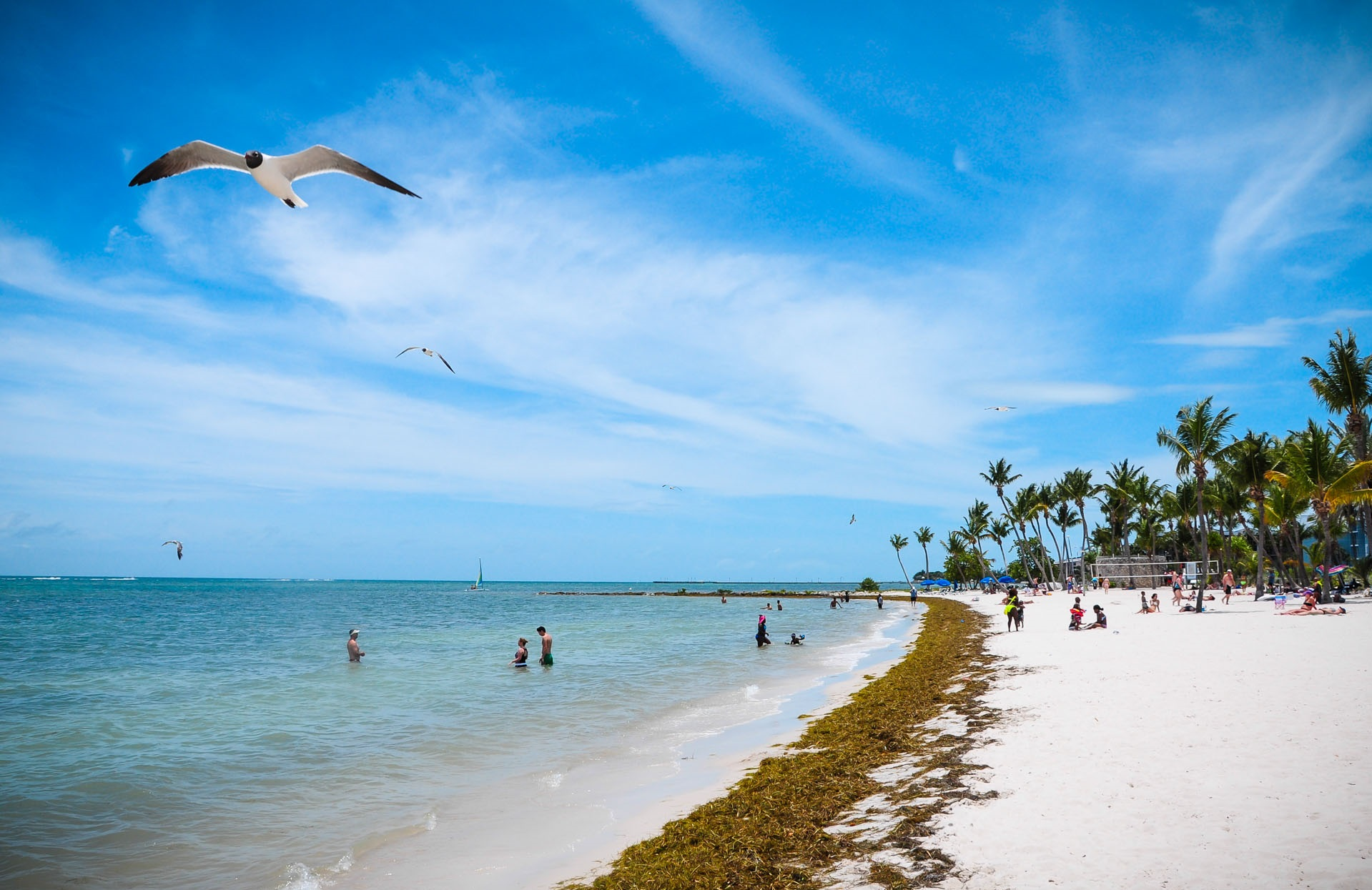 Hotels on Beach in Key West