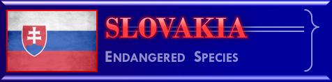 Slovakia endangered species