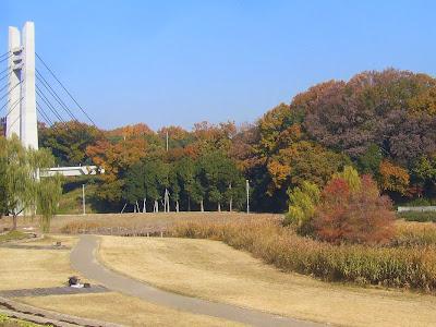 大阪府枚方市・山田池公園 紅葉と美月橋