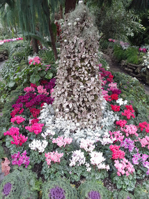 Allan Gardens Conservatory 2019 Winter Flower Show thirteen by garden muses--not another Toronto gardening blog