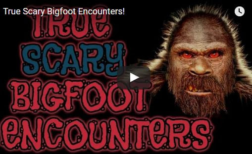 True Scary Bigfoot Encounters!
