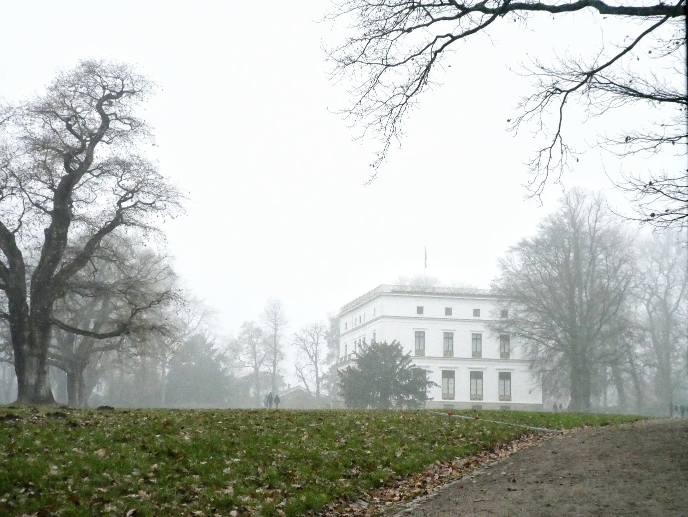 Nebel Jenischpark