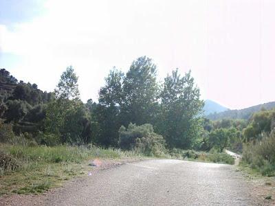 La pileta, camino, pantano de Pena, embalse, finca, almendros, olivos 24