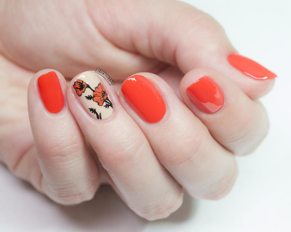 Nailed It | The Nail Art Blog: October 2017