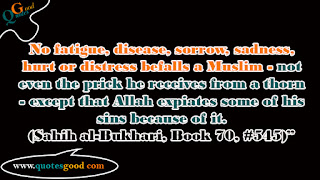 No fatigue, disease, sorrow, sadness, hurt or distress befalls a Muslim - hadees quotes