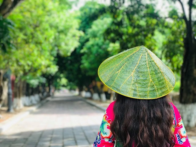 Lotus leaf conical hat with beautiful hand painted decoration