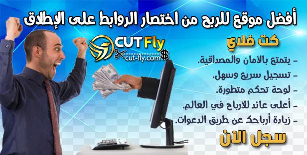 موقع كت فلاي Cut Fly لكسب المال من تقصير الروابط