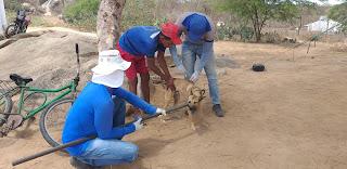 Saúde de Baraúna realiza vacinação contra raiva animal