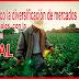 Trece firmas mexicanas reciben certificación Halal para exportar a países musulmanes