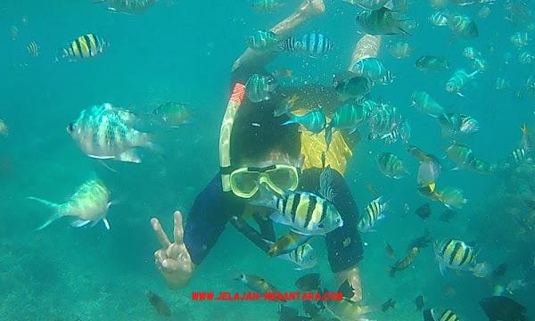 aktivitas selama wisata trip satu hari pulau tidung