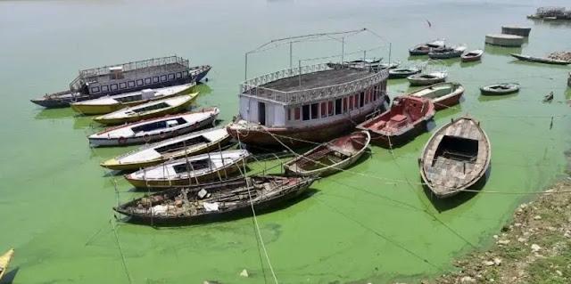 Sungai Gangga Berubah Jadi Hijau Dan Bau, Warga Uttar Pradesh Panik