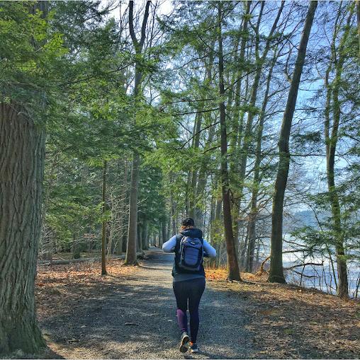 Hiking Long Point State Park, Chautauqua New York