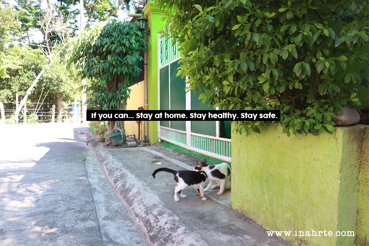 INAHRTE | covid 19 stay at home