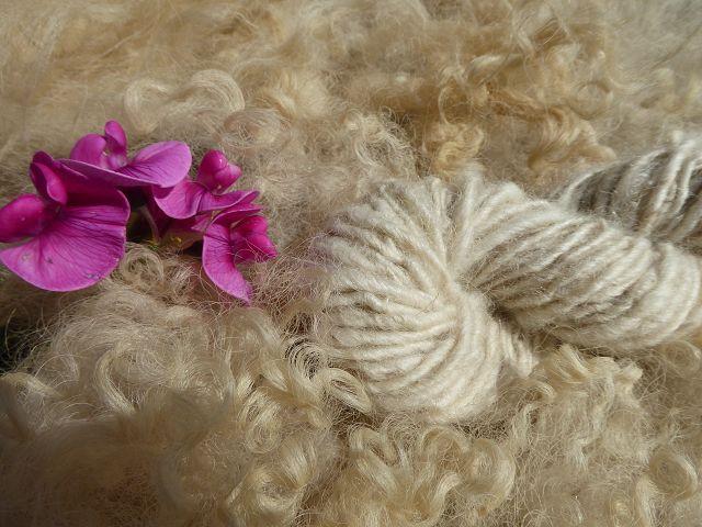 Deckenprojekt aus Schafwolle II Teil 7 Wolle vom Islandschaf