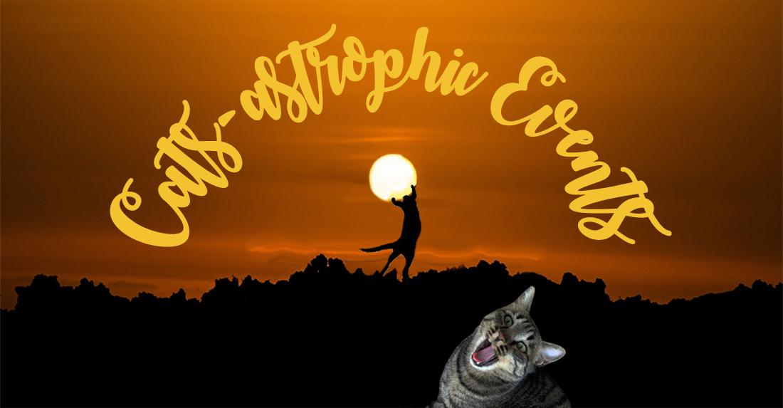 Cats-astropic Events