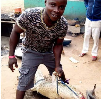 nigerian farmer captures crocodile