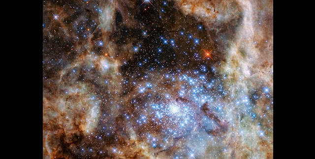 The image shows the central region of the Tarantula Nebula in the Large Magellanic Cloud. The young and dense star cluster R136 can be seen at the lower right of the image. This cluster contains hundreds of young blue stars, among them the most massive star detected in the Universe so far.  Using the NASA/ESA Hubble Space Telescope astronomers were able to study the central and most dense region of this cluster in detail. Here they found nine stars with more than 100 solar masses.  Credit: NASA, ESA, P Crowther (University of Sheffield)