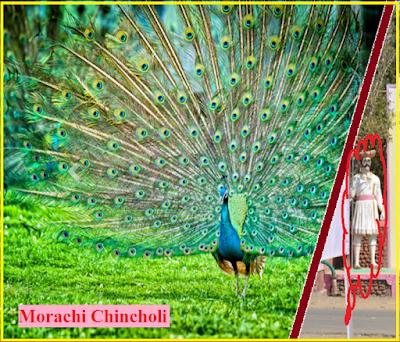 Morachi Chincholi Information in Hindi