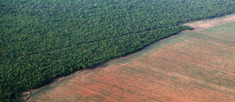 Desmatamento dispara em julho e ameaça acordo comercial com UE