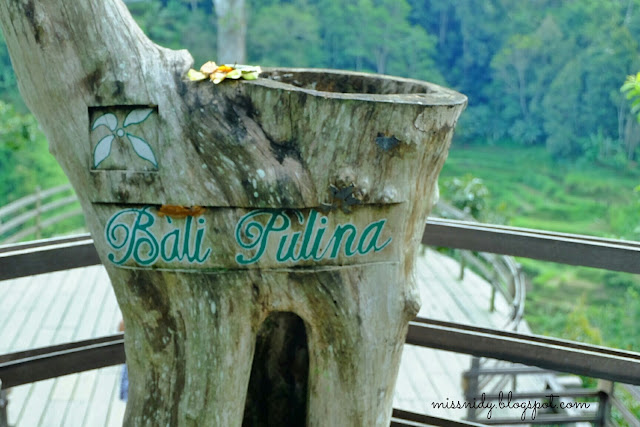 must visit place in bali