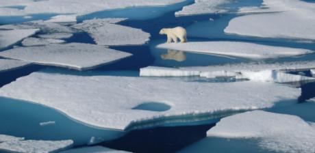 Có vi rút cổ đại bị mắc kẹt trong sông băng không?