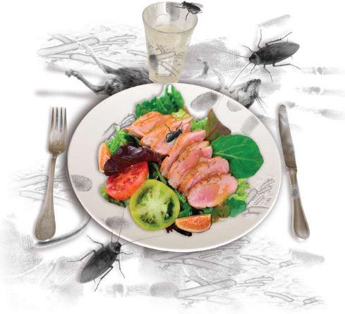 Makanan Penyebab Diare