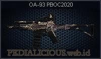 OA-93 PBOC2020